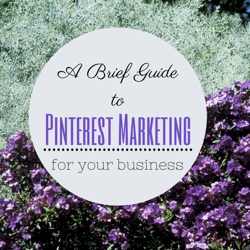 2014-07-01 - Payman Taei - A Brief Guide to Pinterest Marketing for your business