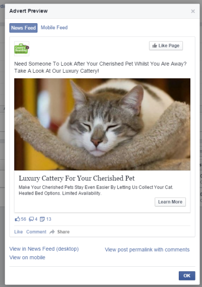Facebook Visual Example of Ad