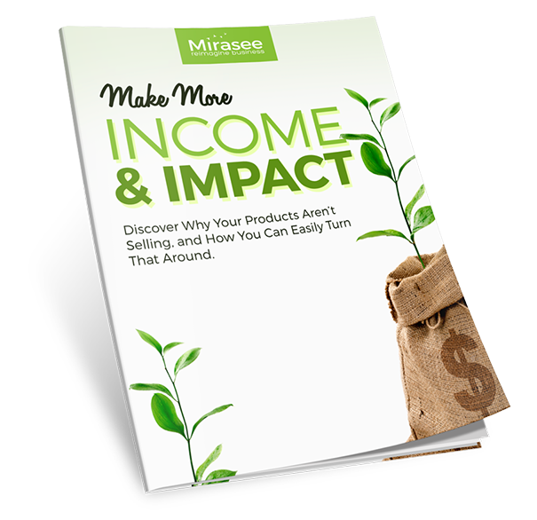 Make More Income and Impact