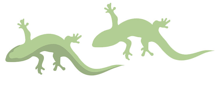 geckos- illustration of blogging strategy
