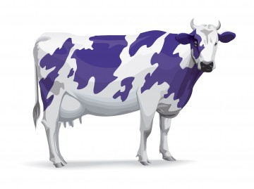 Seth Godin purple cow