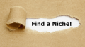 4 Unconventional Ways to Find a Niche