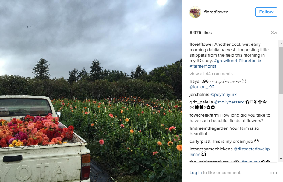 Twitter page of floretflower with photo of pickup truck and flowers